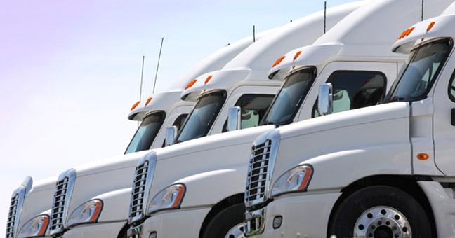 Fleet of White Semi's